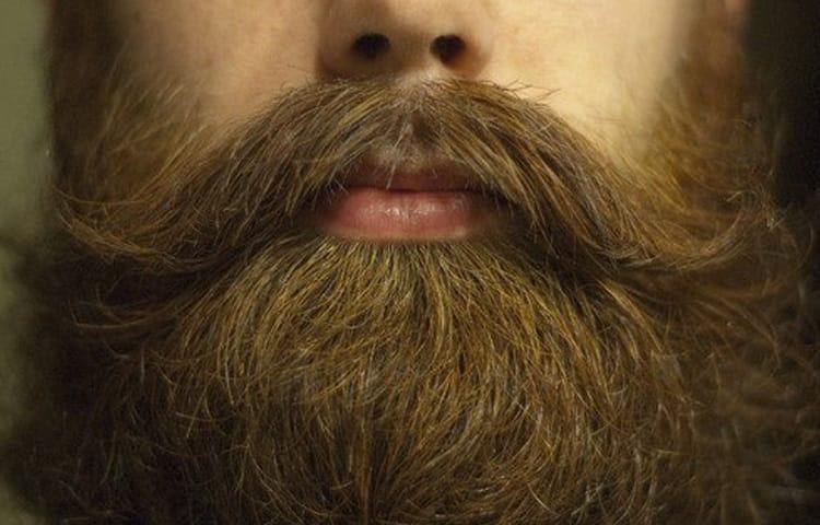Борода и фото. Мужская-парикмахерская: Барбершоп Я в Москве